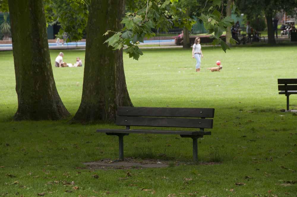 The Friends of Ravenscourt Park_dca0828