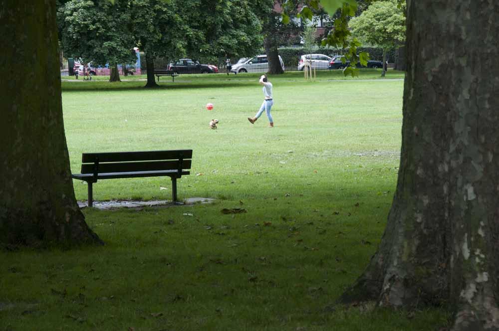 The Friends of Ravenscourt Park_dca0839