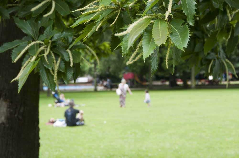 The Friends of Ravenscourt Park_dca0844