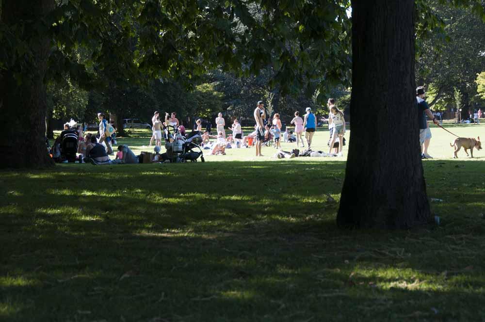 The Friends of Ravenscourt Park_dca0943
