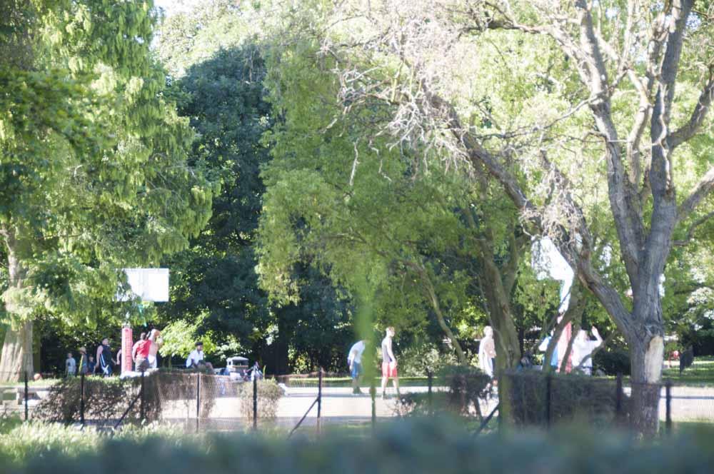 The Friends of Ravenscourt Park_dca0983