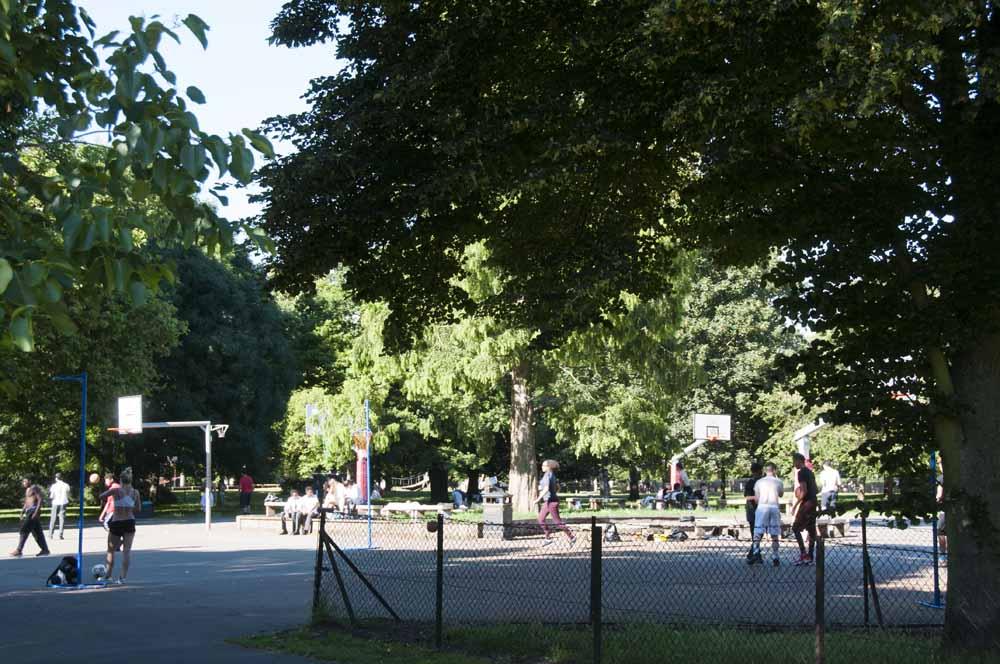 The Friends of Ravenscourt Park_dca0992