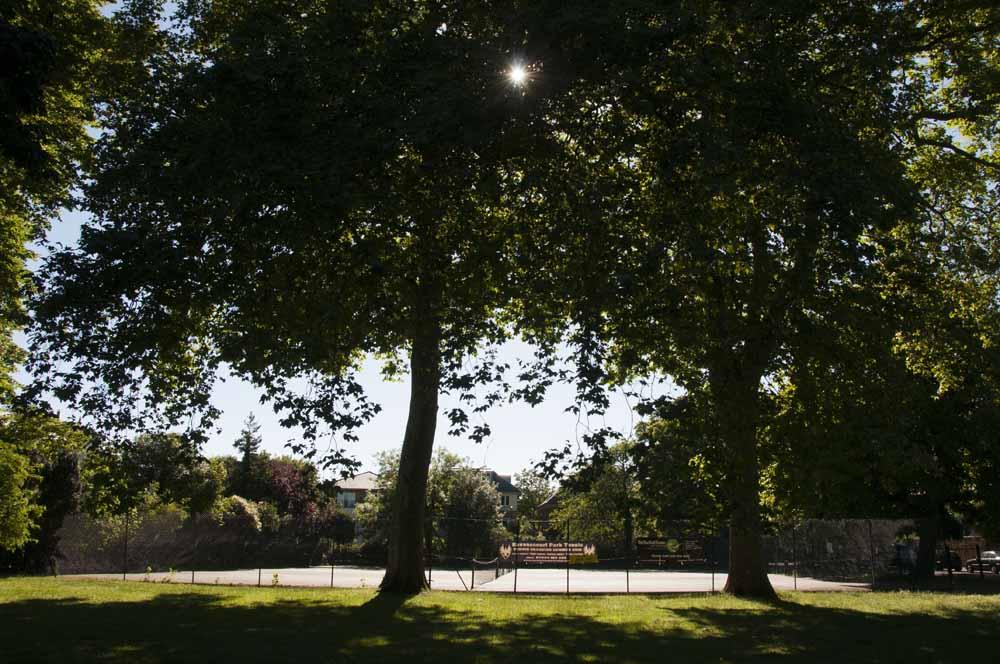 The Friends of Ravenscourt Park_dca0996