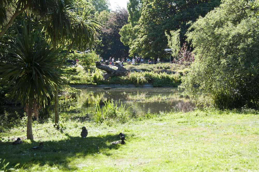 The Friends of Ravenscourt Park_dca1039
