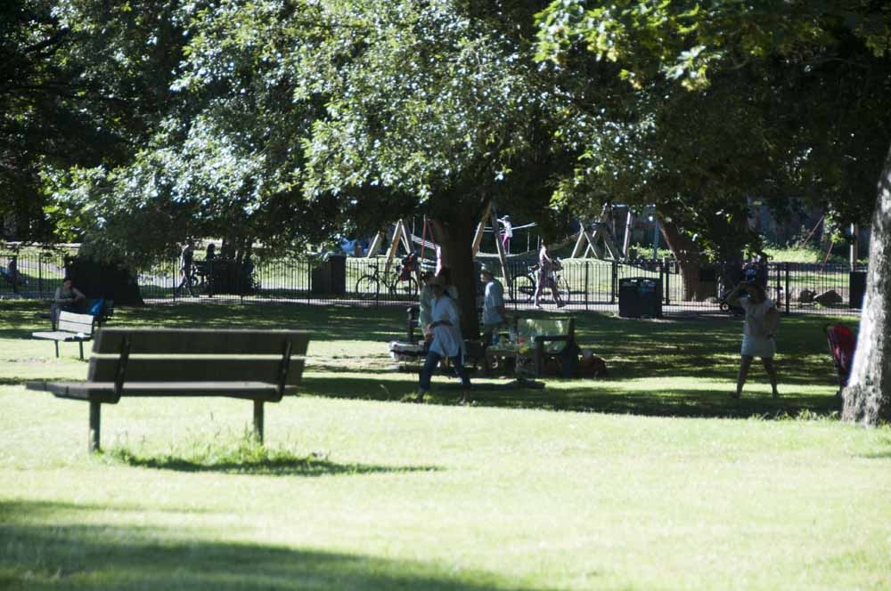 The Friends of Ravenscourt Park_dca1053
