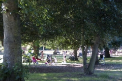 The Friends of Ravenscourt Park_dca1058