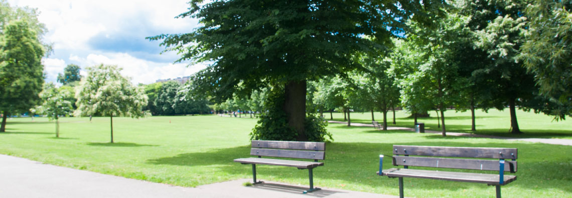 The-Friends-of-Ravenscourt-Park-Benches